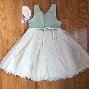 NWT American Princess Size 6 fancy girls dress